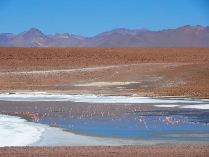 La laguna Hedionda