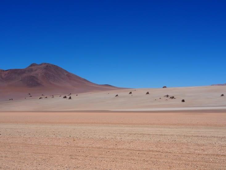 Le désert Salvador Dali