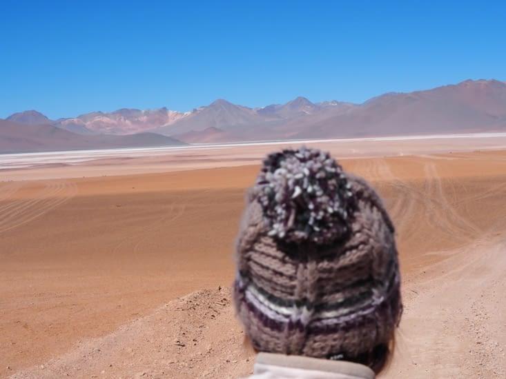 Yoyo dans le désert autour de la laguna Hedionda