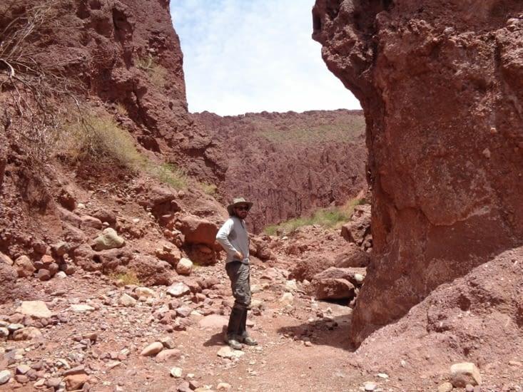 Ronron devant un canyon de Tupiza