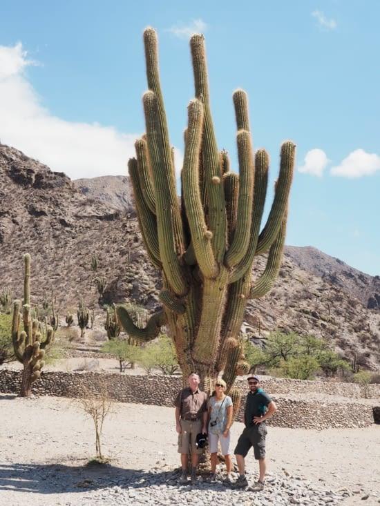 Pose devant un cactus plusieurs fois centenaire