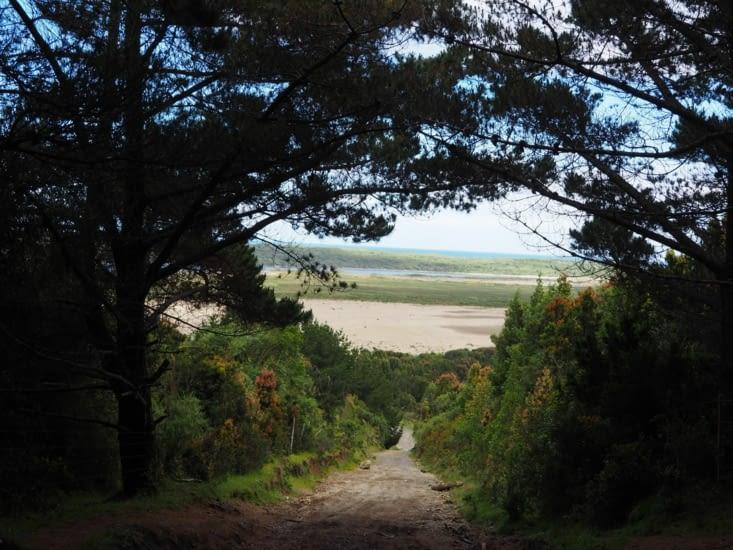 Les chemins au travers de l'île de Chiloé