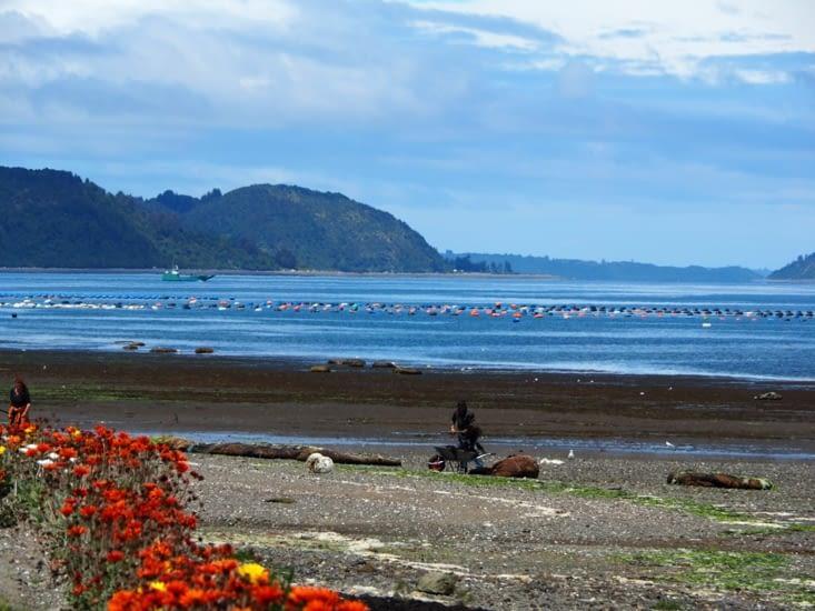 Les plages bordées de fleurs du village de San Juan