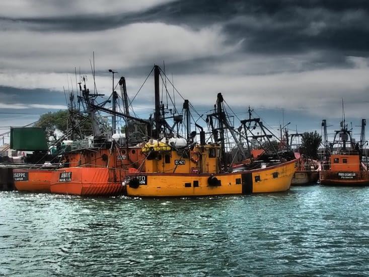 Dans le port, les bateaux patientent
