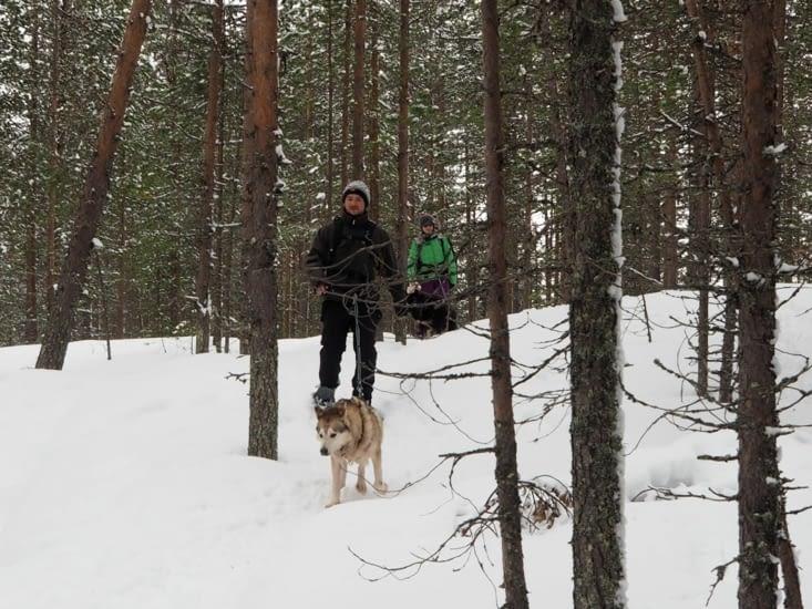 Découverte de la forêt en cani-rando