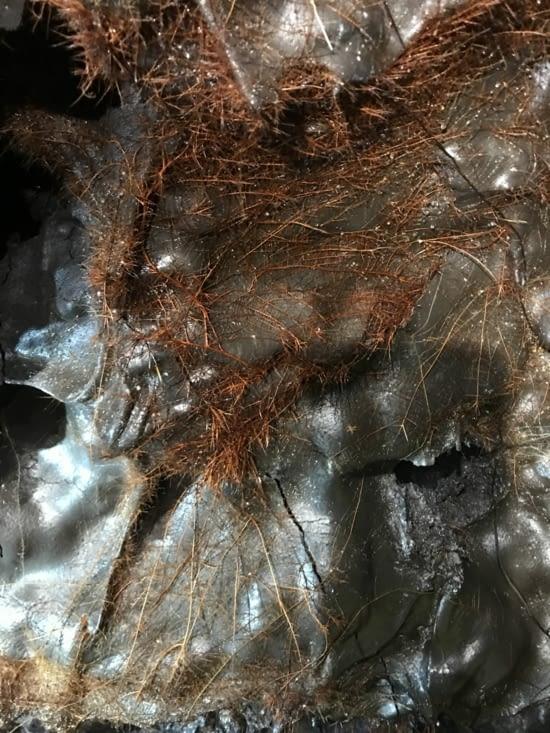 Les racines ressortent dans le tunnel