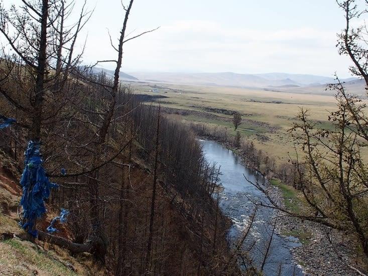 Immensité des steppes sur les bords de l'Orkhon, on retrouve des foulards bleus autours des mélèzes