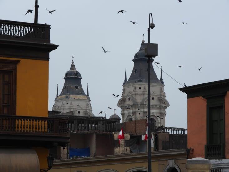 Les oiseaux (et vautours) autour des clochers de la cathédrale de Lima