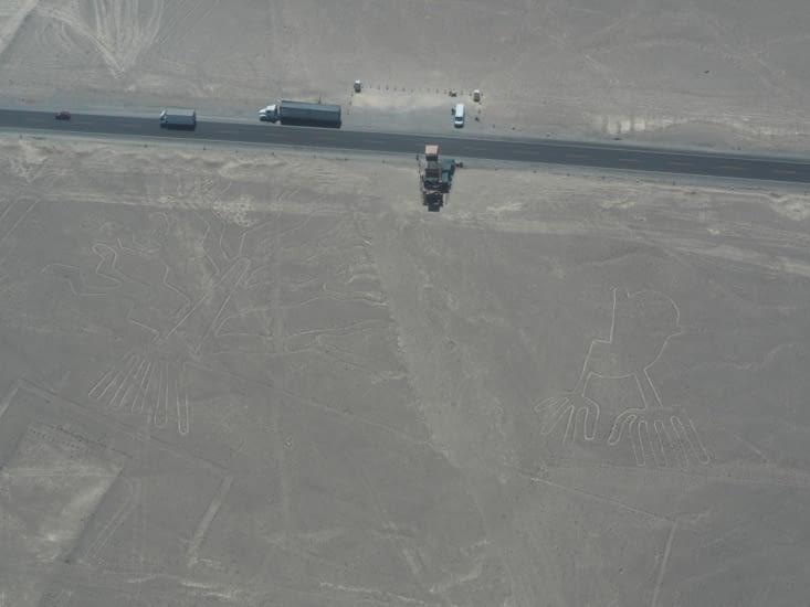 La main, l'arbre, et un point de vue au bord de la panaméricaine  - Nazca
