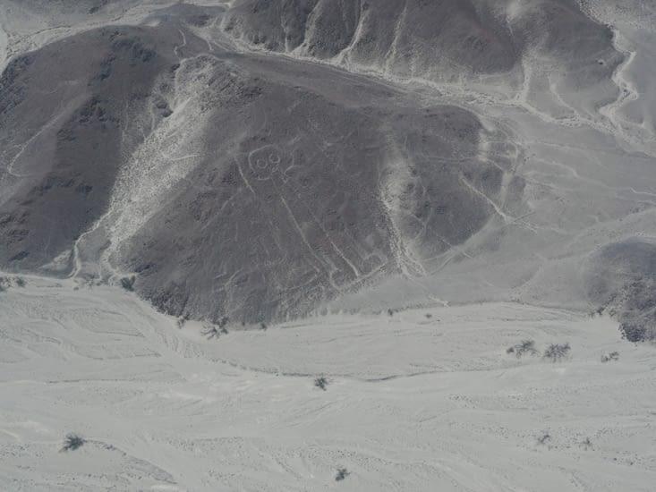 """""""l'astronaute"""" des lignes de Nazca"""