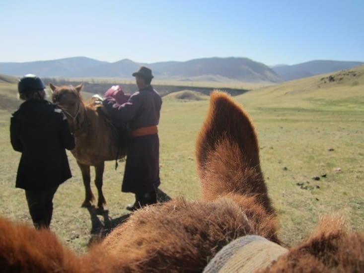 Boldo nous ressangle lors d'une petite pause avant de rejoindre le troupeau