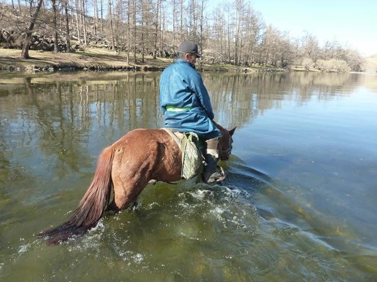 L'eau est froide, surtout pour ceux qui ne sont pas habitués à avoir de petits chevaux.