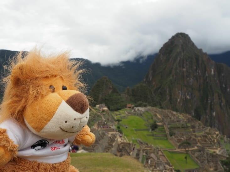 Aldebert est lui aussi arrivé en haut du Machu Picchu (on a bien pensé plusieurs fois l'abandonner quand même)