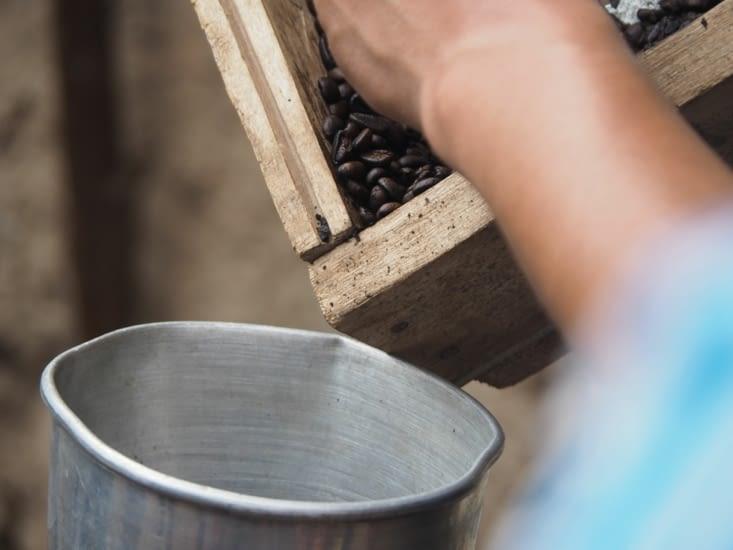 Le café torréfié avant broyage