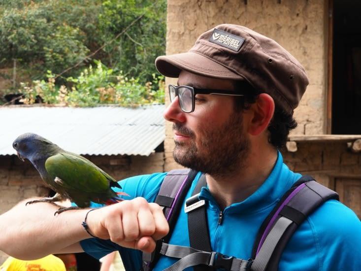 Ronron fait connaissance avec le perroquet