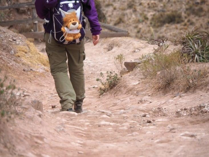 Yoyo descend la vallée pour aller jusqu'à Urubamba
