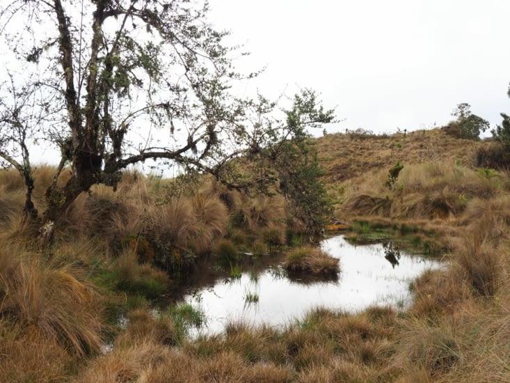 Petit étang caché au milieu des nuages