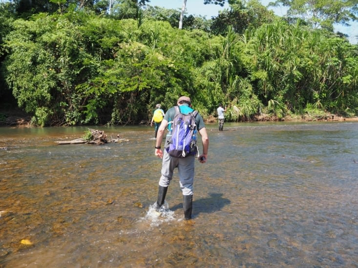 Traversée de rivière prudente pour Ronron