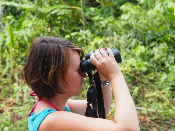 Yoyo à la recherche de la faune du parc Manu