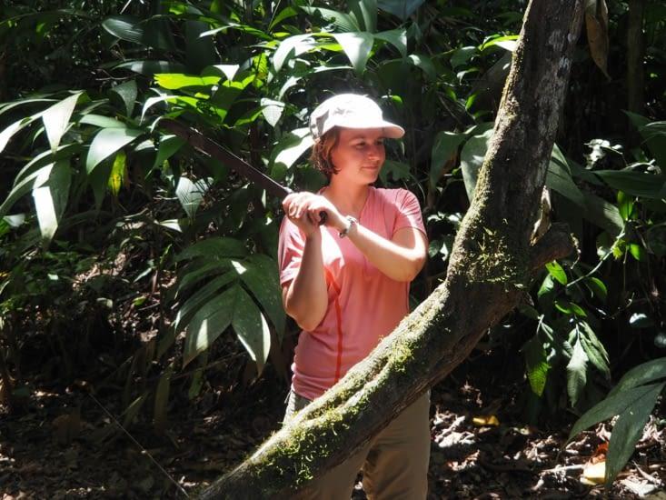 Yoyo s'attaque à la découpe d'un arbre