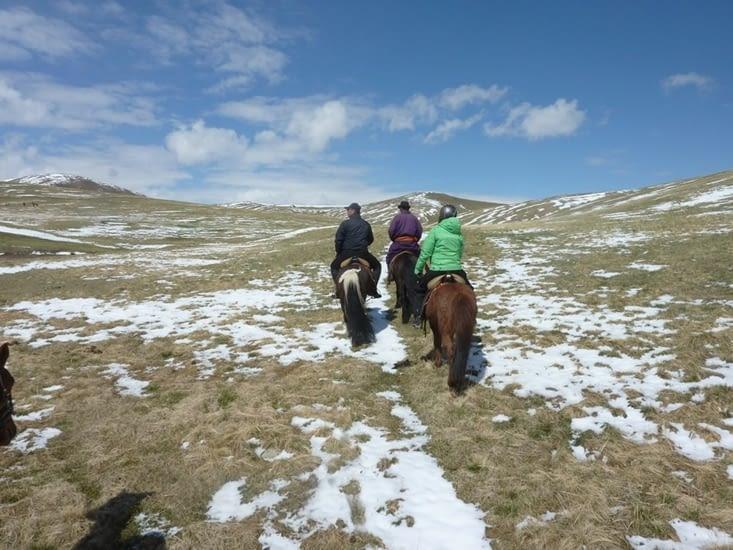 Les chevaux grimpent malgré la pente