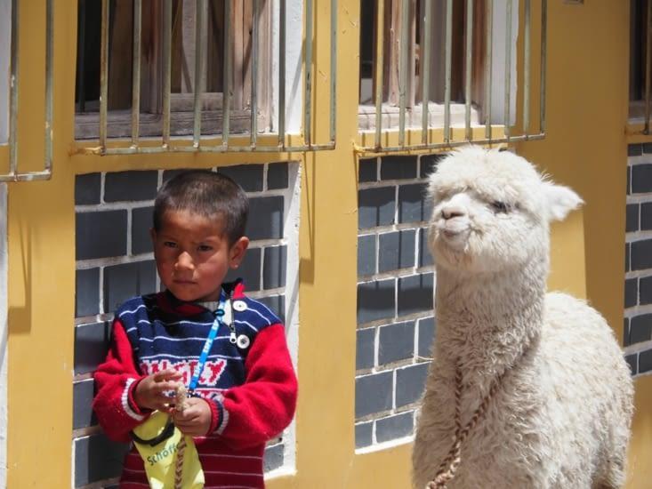 Le petit garçon et son bébé alpaga à Chivay