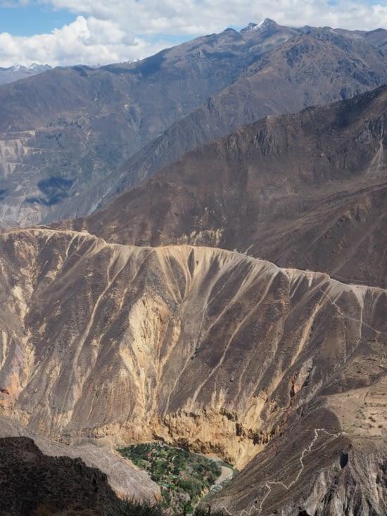 Vue sur l'oasis du Canyon del Colca