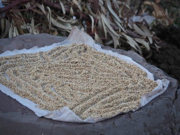 Du quinoa sèche au soleil