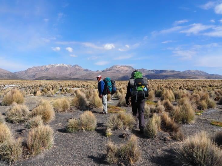 Antonio et Ronron marchent à travers le parc national du Sajama