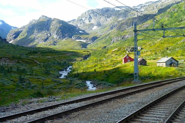 Le train des glaciers au départ de Myrdal en direction d'Oslo