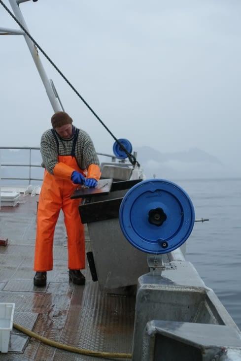 Lars prend soin de découper des filets des poissons pêchés pour le repas de ce soir