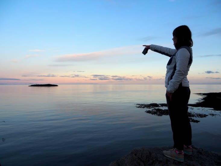 Yoyo cherche les dauphins au large sur fond de lueur rose dans le port de A