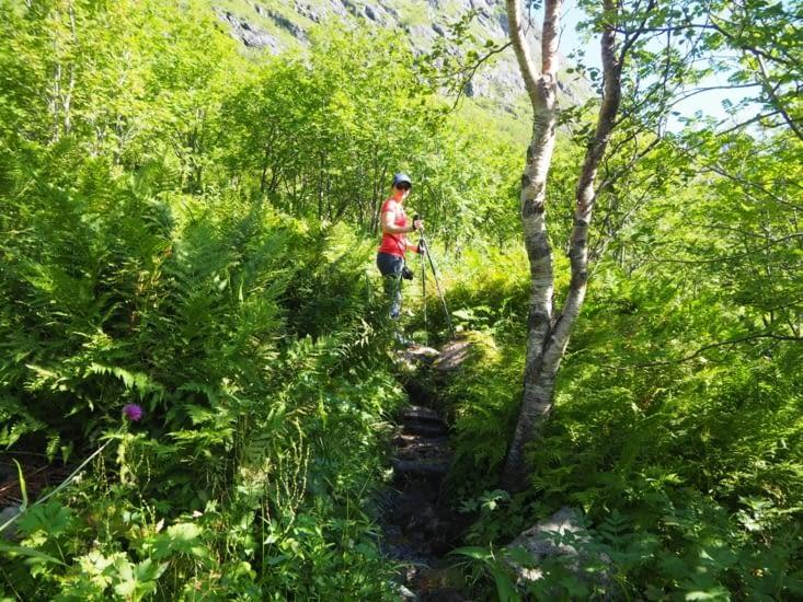 Yoyo en randonnée autour du lac Ågvatnet
