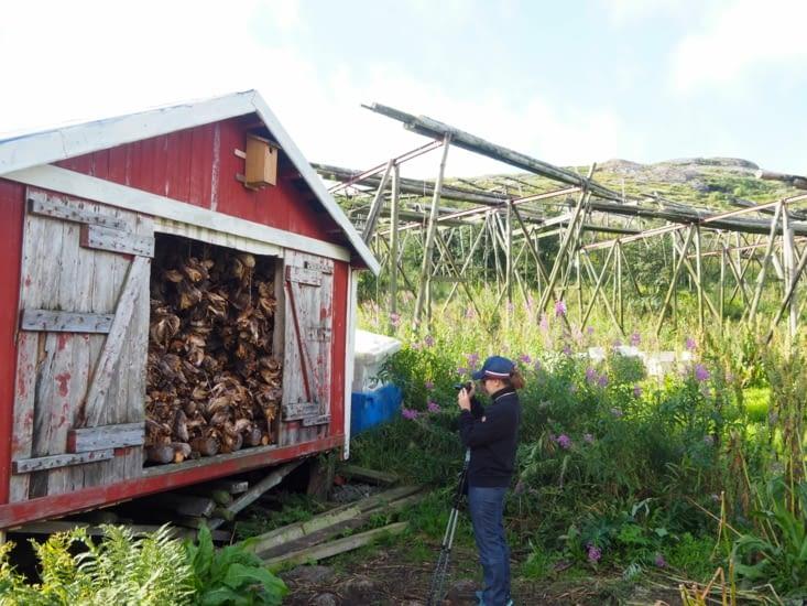 Yoyo à proximité d'un stockage de tête de morue séchées, devant des penderies à poissons