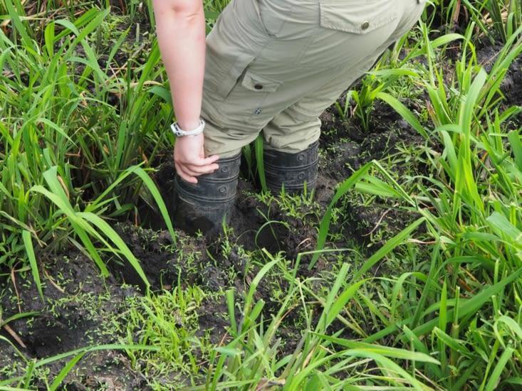 Yoyo s'embourbe dans la boue en cherchant l'anaconda