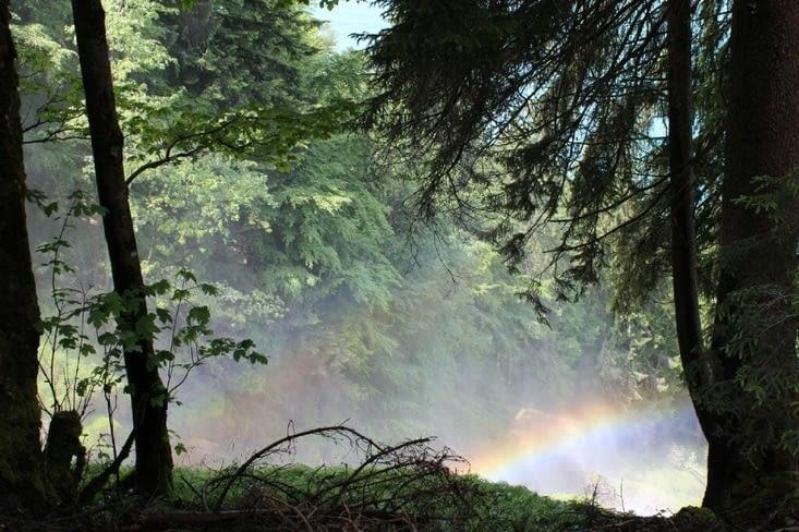 Cascade de Giessbach