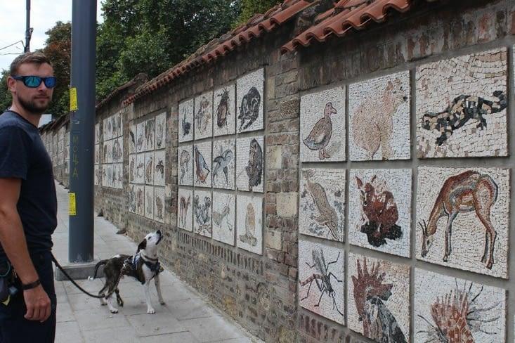 Fresques de mosaïques le long du zoo