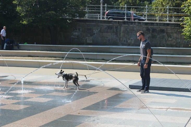 Bucky s'éclate dans la fontaine