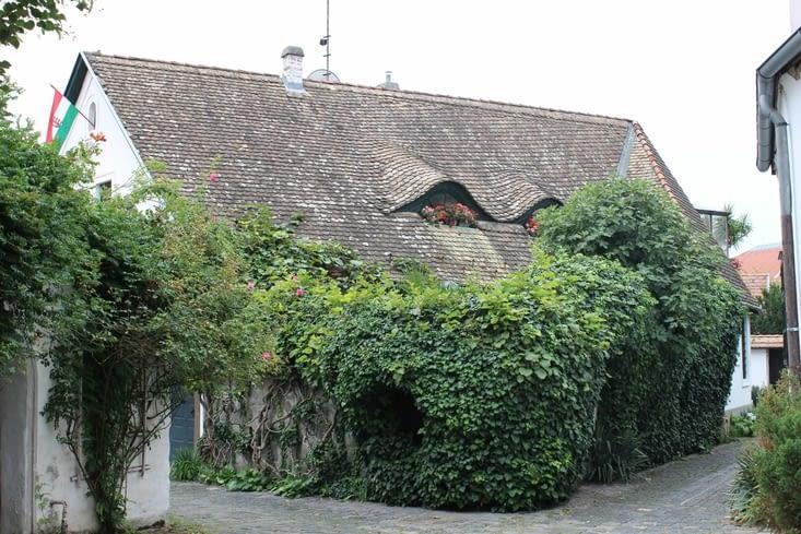 Maison du centre ancien