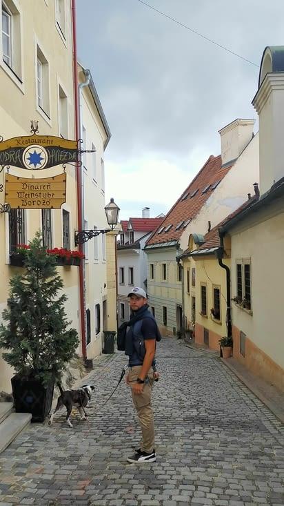 Descente du chateau vers le vieux centre ville