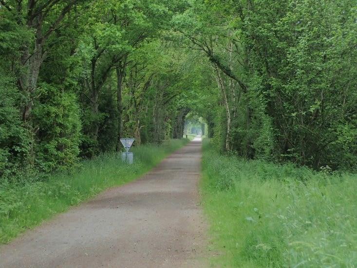 La voie verte à l'arrivée à Vire.