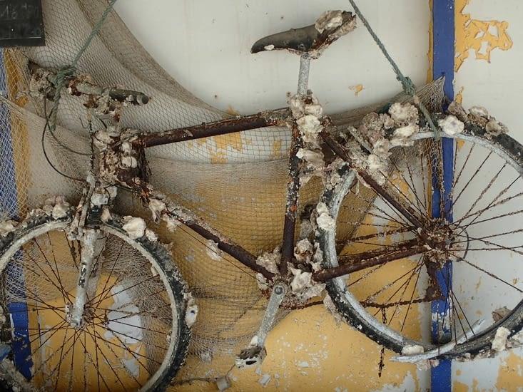 .un ostréiculteur expose le vélo qu'il a pêché. Drôle de poisson.