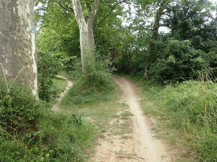 Dans l'Aude, les aménagements cyclables sont parfois inexistants.