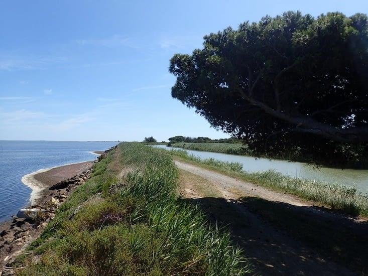 La voie verte circule entre les étangs et le canal