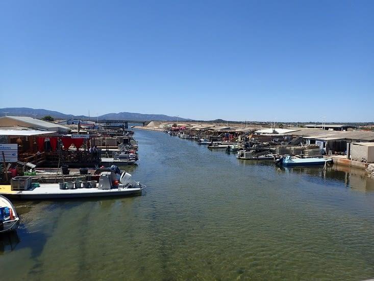 Port Leucate.