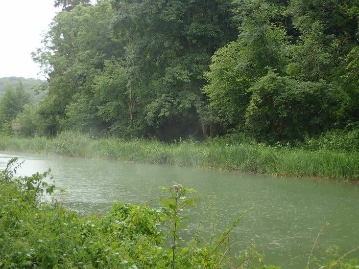 La pluie fait flotter la brume sur le canal.