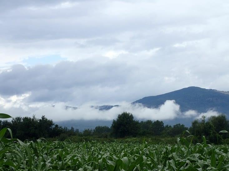 Les Vosges ce matin.