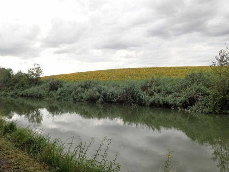 Surle canal de la Marne au Rhin.
