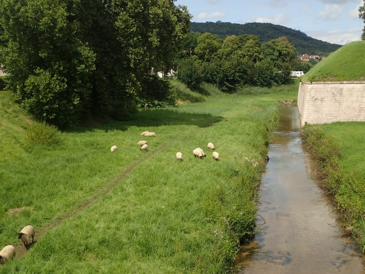 .Le service municipal des espaces verts de Toul.