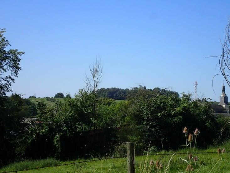 Les initiés auront reconnu le clocher de l'église de Marlemont et l'antenne de la Butte.